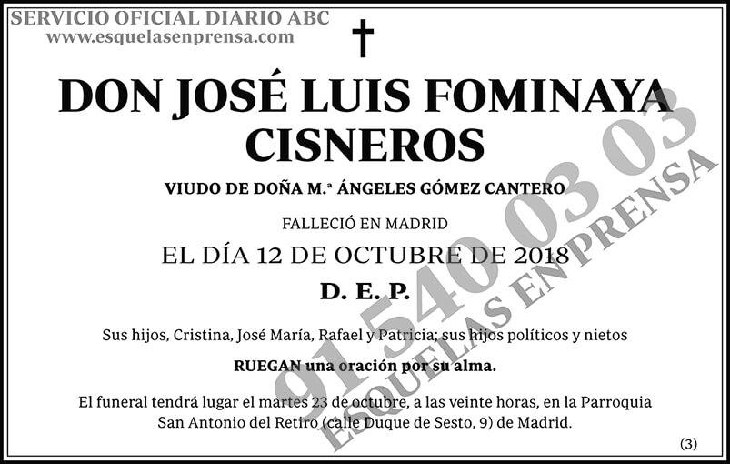 José Luis Fominaya Cisneros